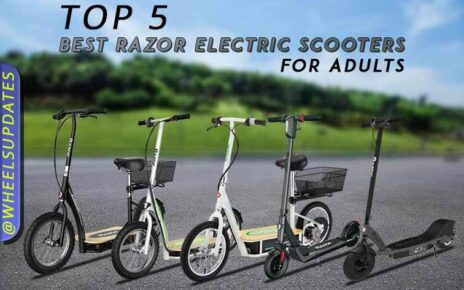 Top 5 Best Razor electric scooter for adults